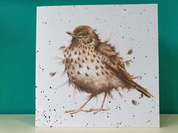 COUNTRY SET song thrush