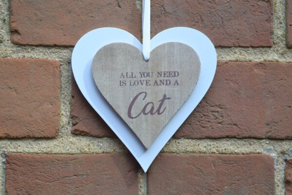 love and cat double heart sign
